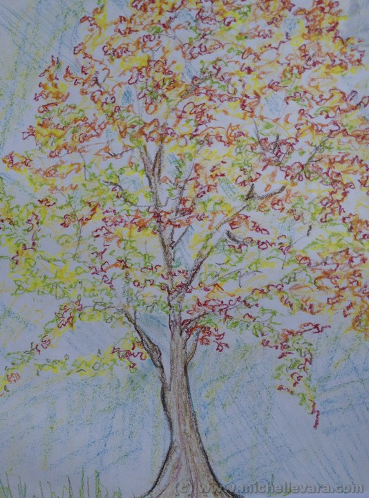 Artist michelle Vara working with Oil pastel   fall tree in Hudson NY.