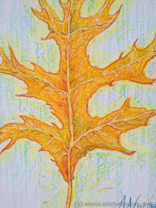 Leaf Artist michelle Vara working with Oil pastel   fall tree in Hudson NY.