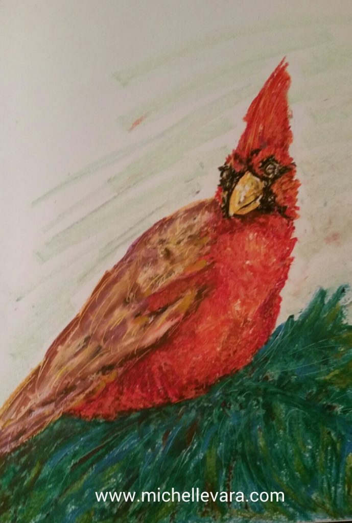 Big red Cardinal, oil pastel. michelle vara, ballard road art studio,