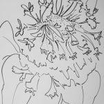 Clover Flower